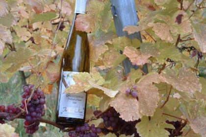 Vins Domaine Henri Kaes